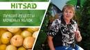 Лучшие рецепты для замачивания яблок 🍏 Моченые яблоки от Хитсад