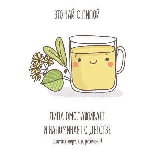 Чай полезен.