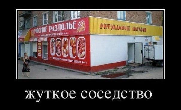 http://cs14101.vk.me/c7006/v7006001/1a12c/oMStP6JnPi0.jpg