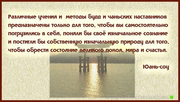 http://cs425930.vk.me/v425930949/62e2/MTsgZdc6etU.jpg