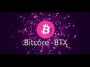 Анализ и прогноз Биткоре (Bitcore BTX) монета для майнеров хорошо упала