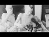 DREAMCRUSHER -