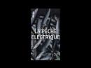 Environnement la pêche électrique