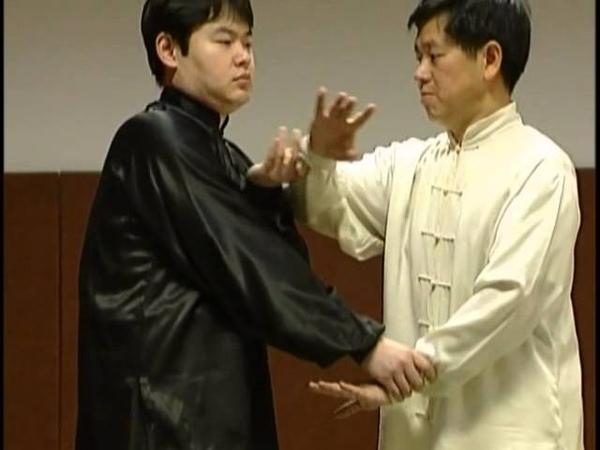 Tai chi applications martiale - cours d'armatiaux