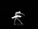 Анастасия Волочкова - Умирающий лебедь, танцует, смотреть видео, русский балет классика.mp4