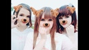 【Eri・Aya・Mugi】白金ディスコ/ Platinum Disco dance cover【踊ってみた】