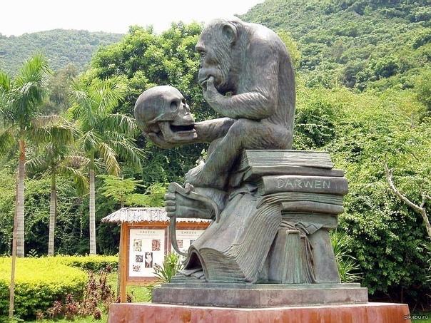 Памятник шимпанзе, который сидит на трудах Дарвина.