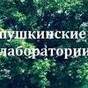 """Пушкинские лаборатории"""