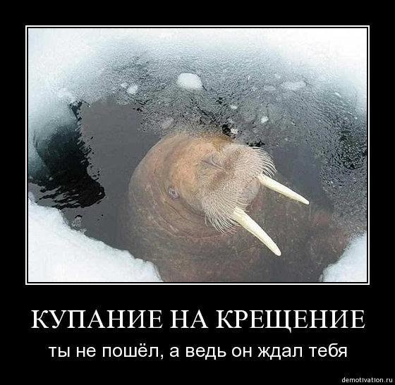 http://cs322317.vk.me/v322317058/8b6b/XvHNBeiCeZc.jpg
