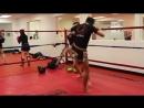 TimTam Power Massager - Jeff Chan Pre-Workout Quad Activation