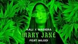 Kali x Magiera - Mary Jane feat. W