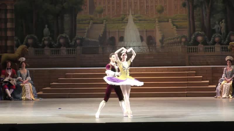 Vikharev Sleeping Beauty Tereshkina Shklyarov Marriage