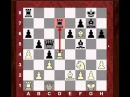 Is the center counter (Scandinavian) defence any good?!  Dmitry Andreikin vs Fabiano Caruana 2014