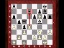 Is the center counter (Scandinavian) defence any good?!  Dmitry Andreikin vs Fabiano Caruana 2014