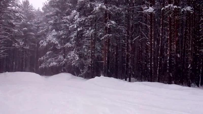 Под снежным покрывалом февраля
