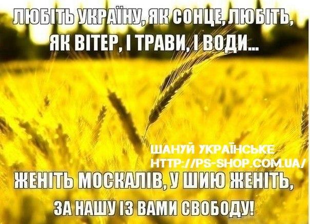 Павленко отозвали с должности министра, чтобы его обезопасить, поскольку ему не давали контролировать ситуацию в аграрном секторе, - Сыроид - Цензор.НЕТ 2566