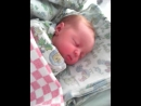Василиса первый день 23.05.2017 родилась в 01.20