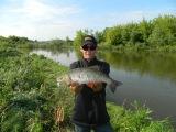 Голавль около килограмма, поймал отпусти! SV FISHING LURES KOKETKA