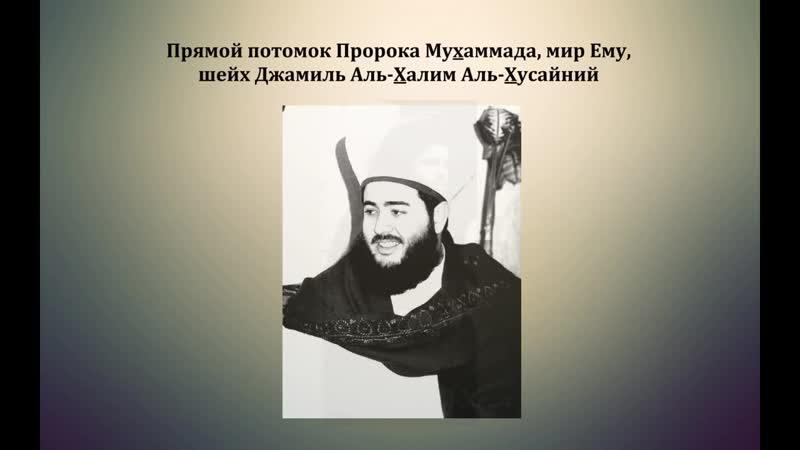 Потомок Пророка Мухаммада, Мир Ему, Шейх Джамиль уничтожает ваххабитов. medium