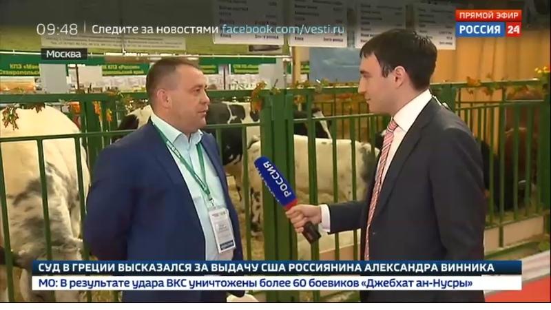 Новости на Россия 24 • ВДНХ вернулась к истокам: в павильонах козы, коровы, верблюды и новый урожай