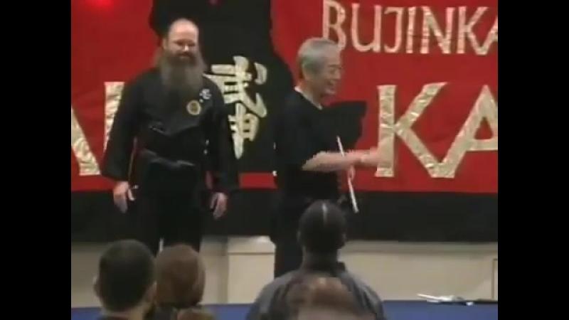 БИЕО. Будзинкан (яп. 武神館 Дворец Божественного Воина)