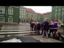 Вот так детей с садика водят в Польше по городу