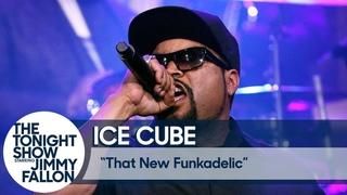 Ice Cube: That New Funkadelic [NR]