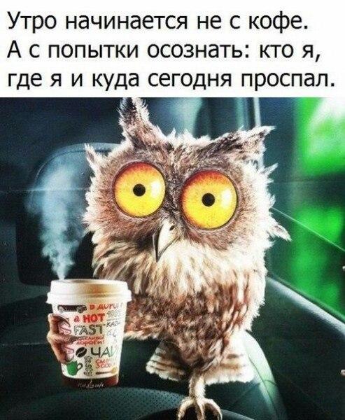 Алена Бирюкова   Санкт-Петербург