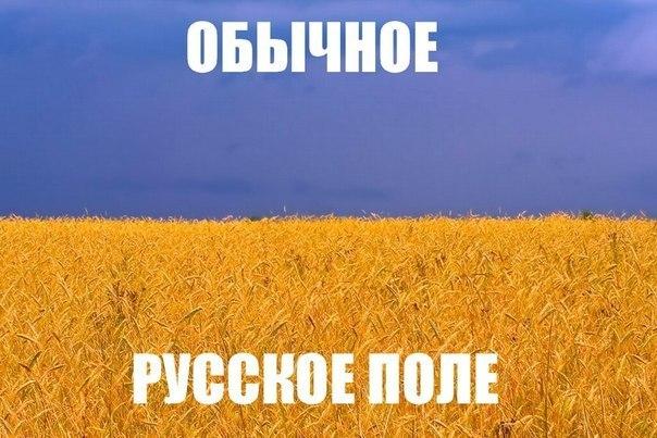Россия в полной мере ощутит влияние санкций Запада в следующем году, - МИД Чехии - Цензор.НЕТ 6569