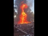 Пожар по ул.Мира 6г