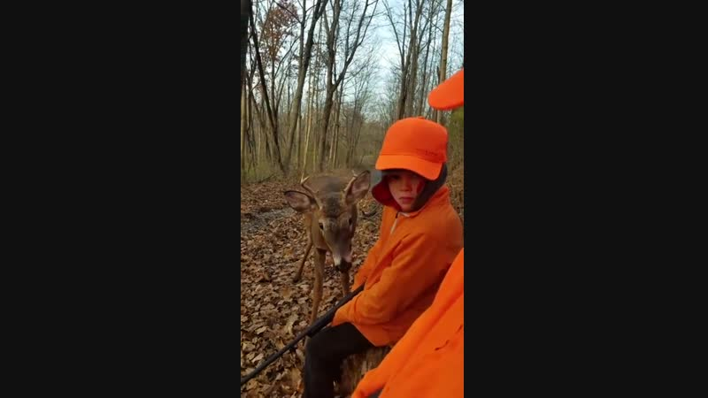 Dad and son squirrel hunting when an interested deer came up to say hi