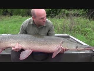 5 необычных рыб, пойманных и снятых на камеру