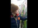 Оброз лыж в магазине Триал-спорт