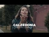 Музыка из рекламы Кальцедония (Регина Тодоренко) (2018)
