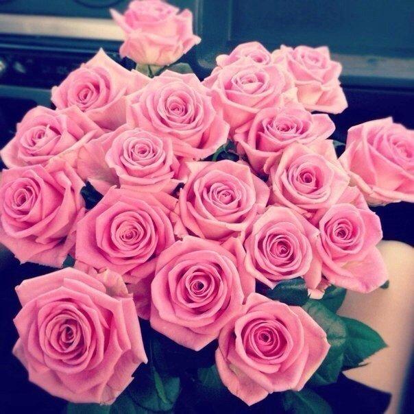 Flower [1]