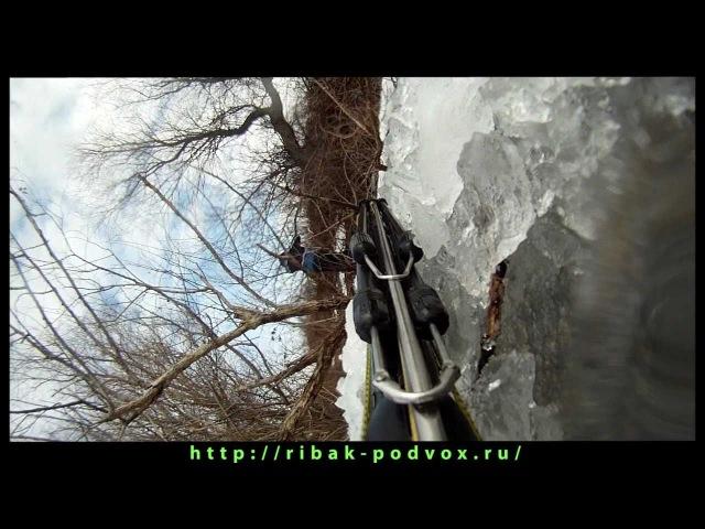Подводная охота подо льдом » Freewka.com - Смотреть онлайн в хорощем качестве