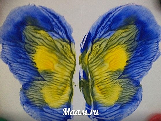 БАБОЧКИ — идеальные модели для рисунков В ТЕХНИКЕ МОНОТИПИЯ. Работы своих воспитанников показала пед… (4 фото)