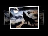 Стас Назимов Одинокий волк !!!!