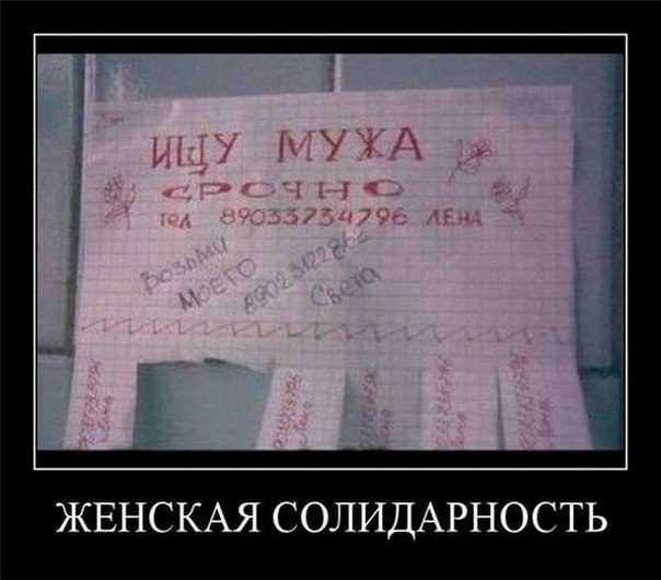 Прикольные цитаты, статусы и стишки ...: vk.com/club11520398