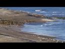 Underworld - Cowgirl (mix Bedrock vc BBC Deep Blue)