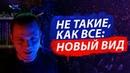 Miron Volsky - Не такие, как все: новый вид / Сексуально не такой, как все / Гендерквиры, пансексуалы, моноромантик