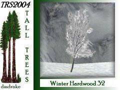 Winter Hrdwd 32 6m