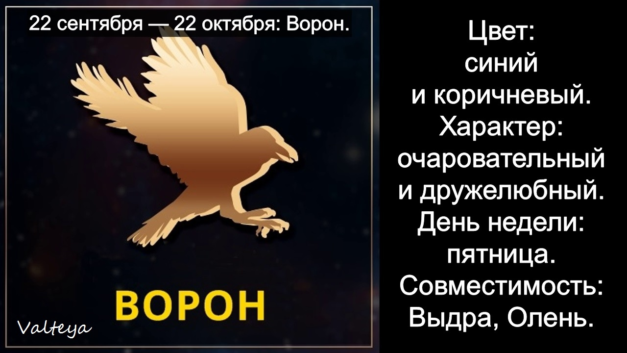 зодиак - Гороскоп американских индейцев. Тотемные животные по Знаку Зодиака. Астрология. 8_qHwKatYss