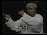 Fu Zhong Wen Yang Family Tai Chi Long Form part 1