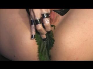 Stinging nettle - qs (2009) queensnake, bdsm, torture, fisting, prolapse, bondage, sadism