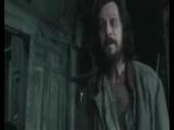 ~ Happy ~ Harry Potter fun video