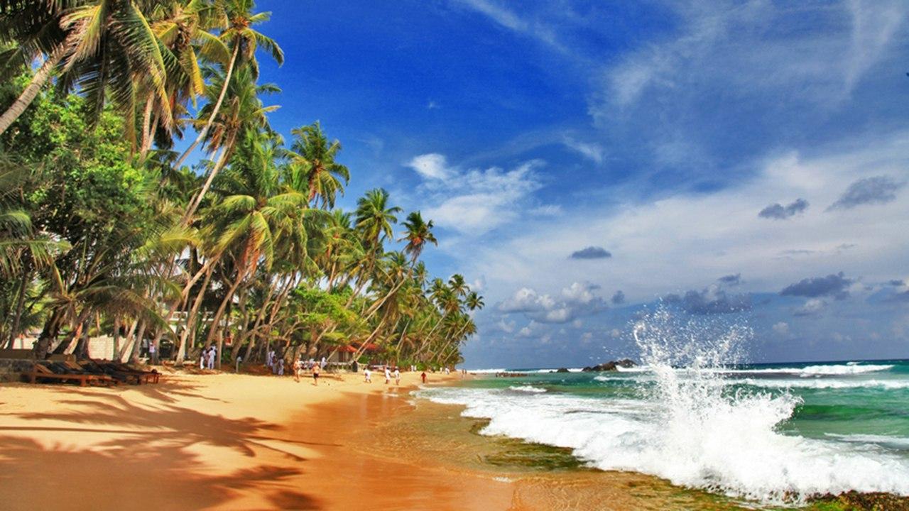 Шри-Ланка, Негомбо!!! 11 дней!!! 45 050 руб. с человека!!!