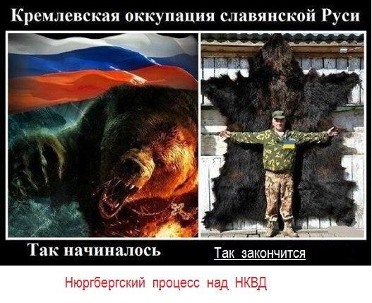 У Путина есть все возможности, чтобы завершить конфликт в Украине в течение нескольких часов, - польский депутат - Цензор.НЕТ 9810