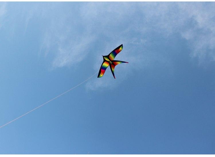 Воздушный змей -