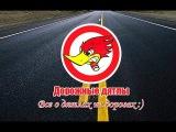 Дорожные дятлы - 2 выпуск (полная версия)